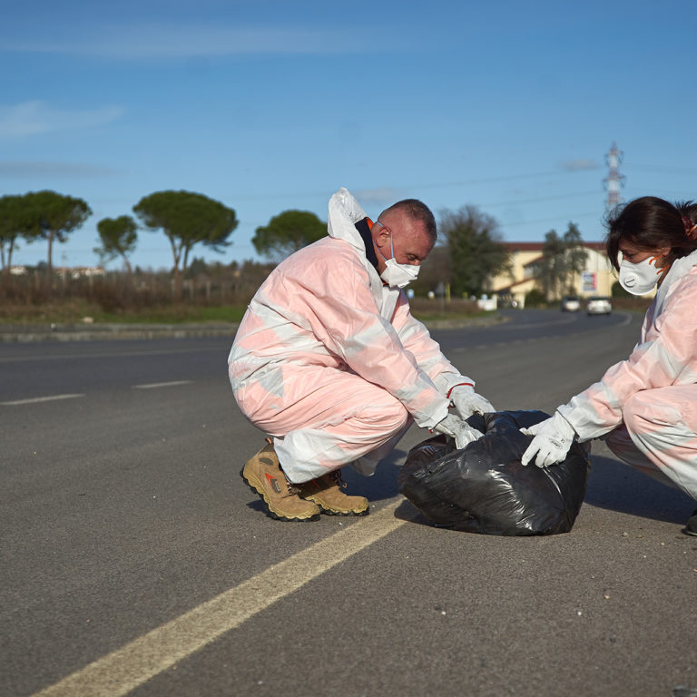 Rimuovere le spoglie degli animali per la tutela del decoro urbano