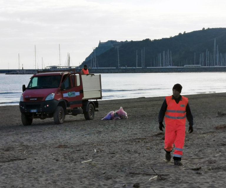Rimozione e bonifica di rifiuti urbani pericolosi giacenti in aree pubbliche o ad uso pubblico