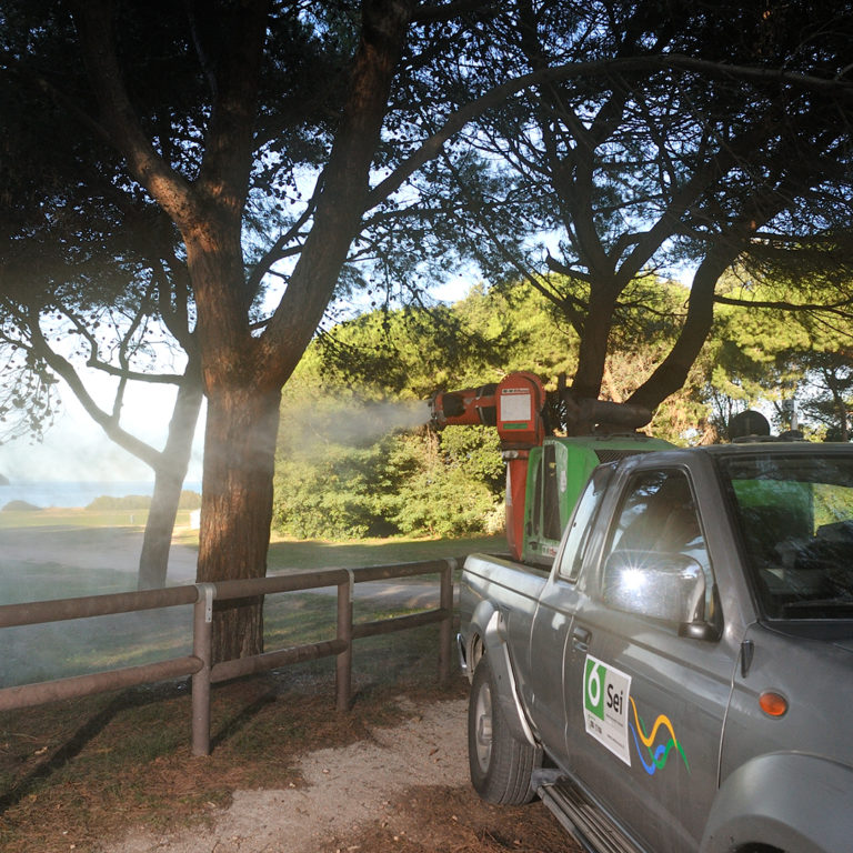 I servizi di 6Plus: come difendere le nostre città dalle zanzare