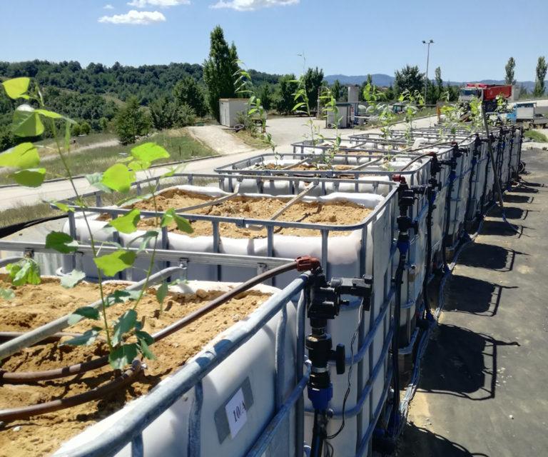 Gestione post‐operativa di discariche esaurite di rifiuti urbani